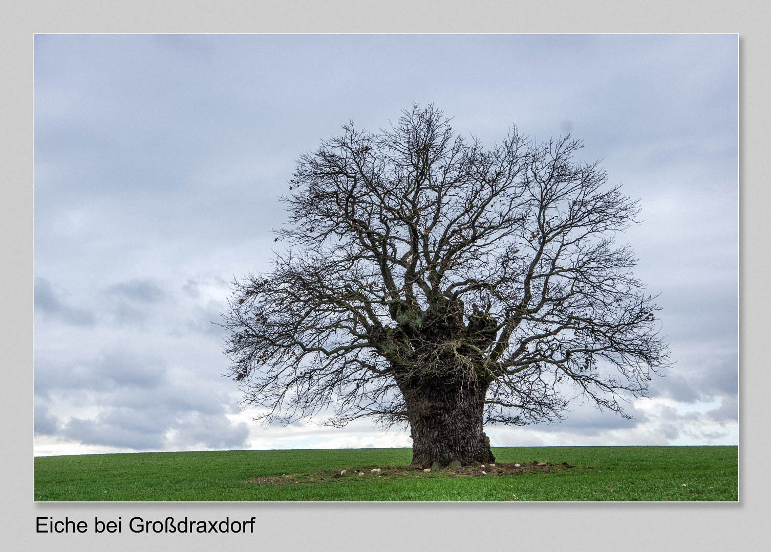 Guenther-Kuehnl-Grossdraxdorf