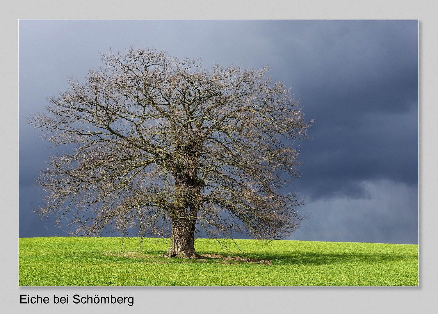 Guenther-Kuehnl-Schoemberg